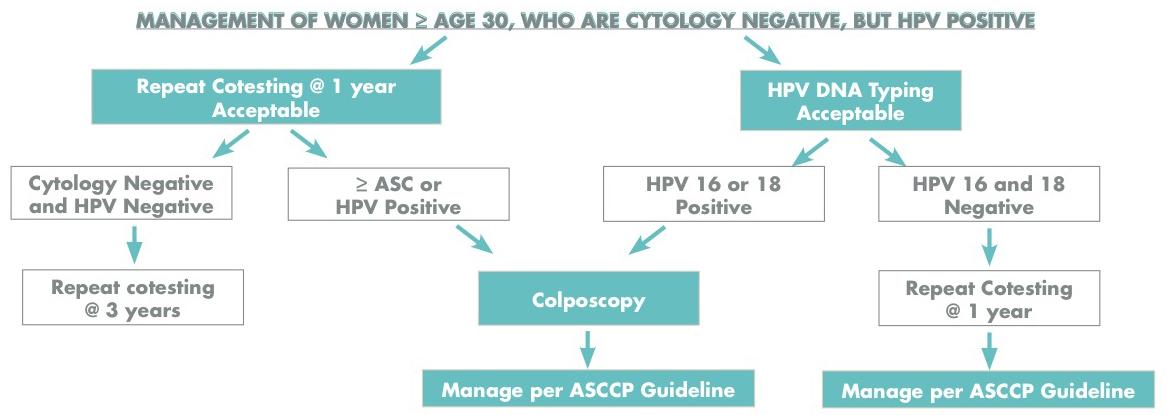 positive for hpv virus hpv virus impfung jungen