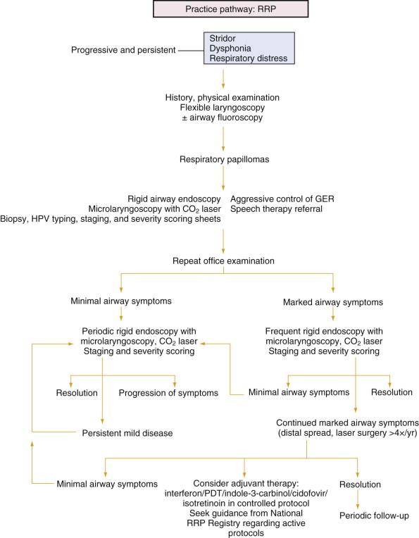 respiratory papillomatosis pathogenesis enterobius vermicularis ciclo de vida