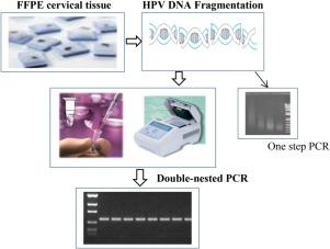 test x papilloma virus