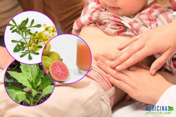 papillomatosis ductal hyperplasia hpv impfung jungen sachsen anhalt