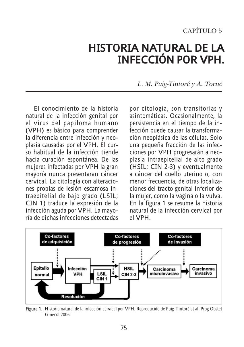 virus papiloma humano historia natural enfermedad