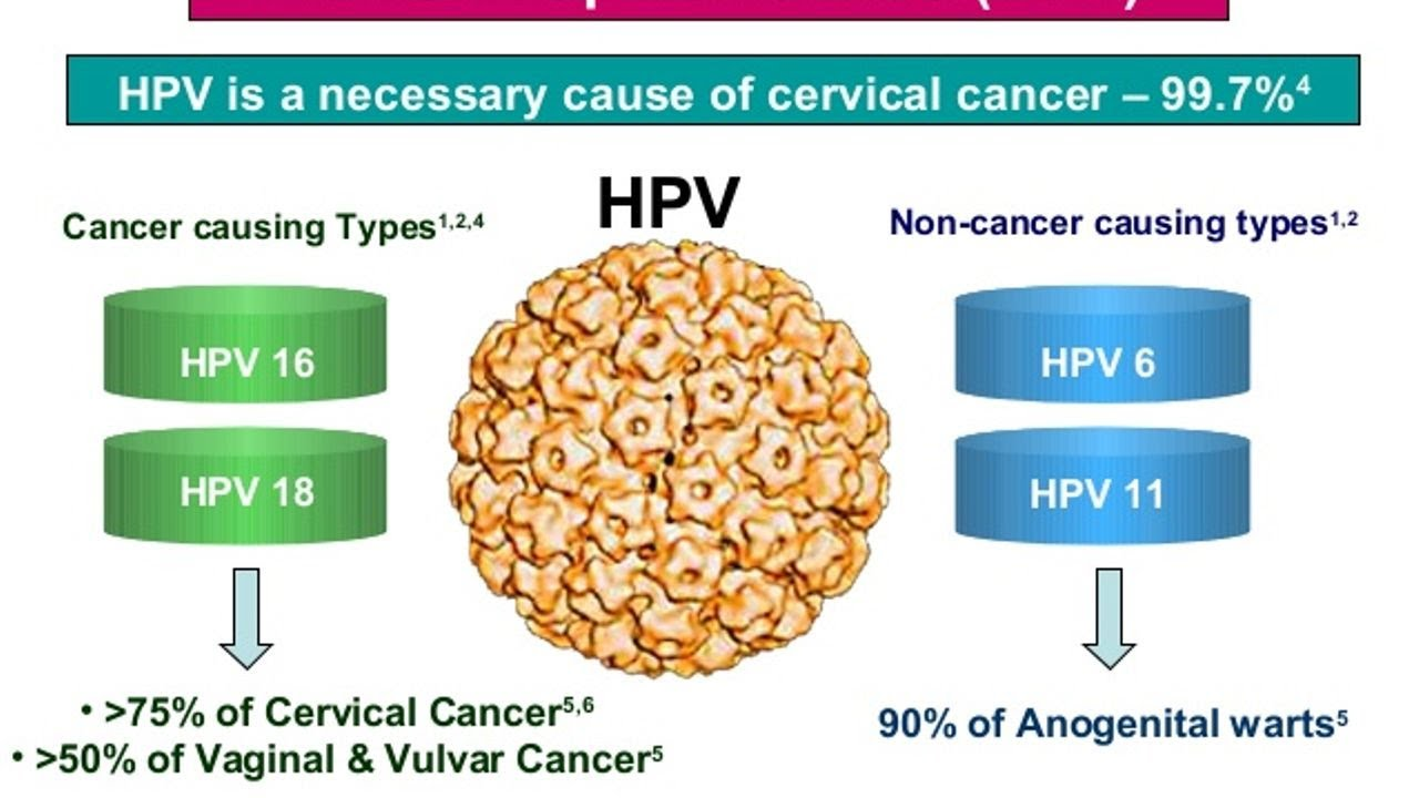 hpv or cervical cancer