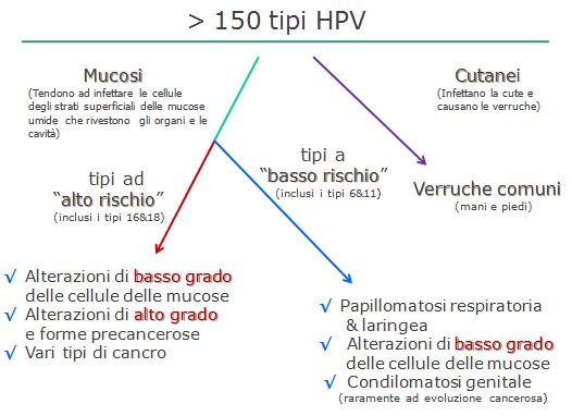hpv alto rischio sintomi cream for hpv bumps