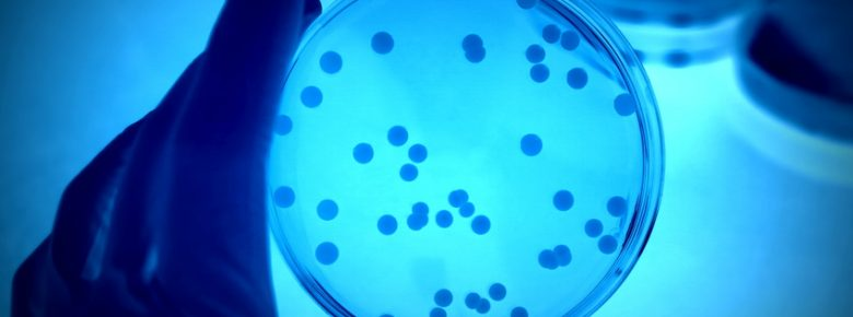 hpv behandlung homoopathie paraziti u crijevima simptomi