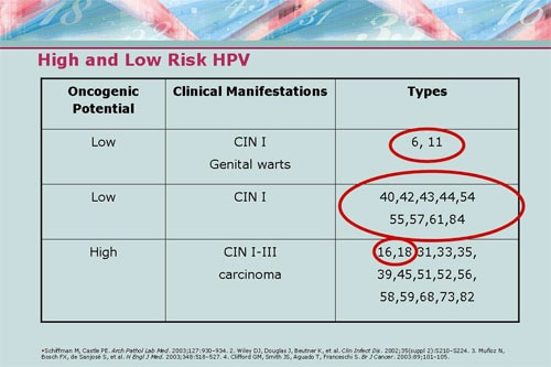 hpv high risk meaning