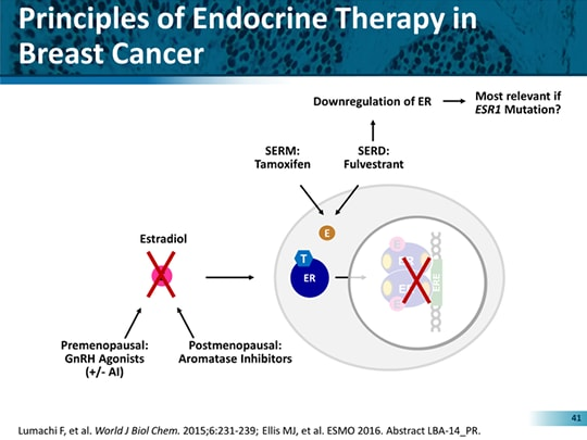 cancer endocrine therapy