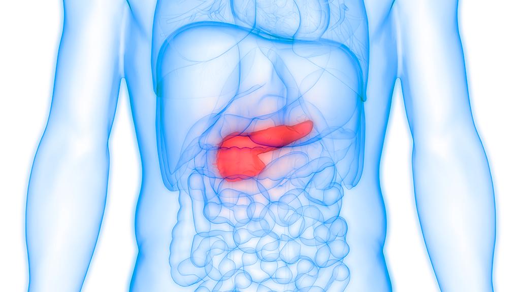 cancer pancreas nouveau traitement