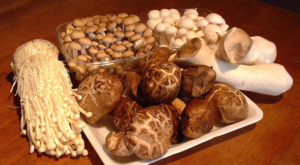 ciuperci shimeji peritoneal cancer how diagnosed