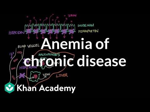anemia 0 metastatic cancer hindi