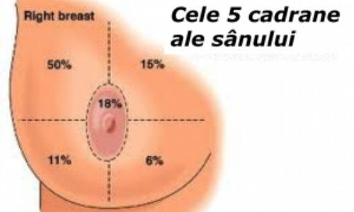 cauze cancer la ficat herpes hpv difference