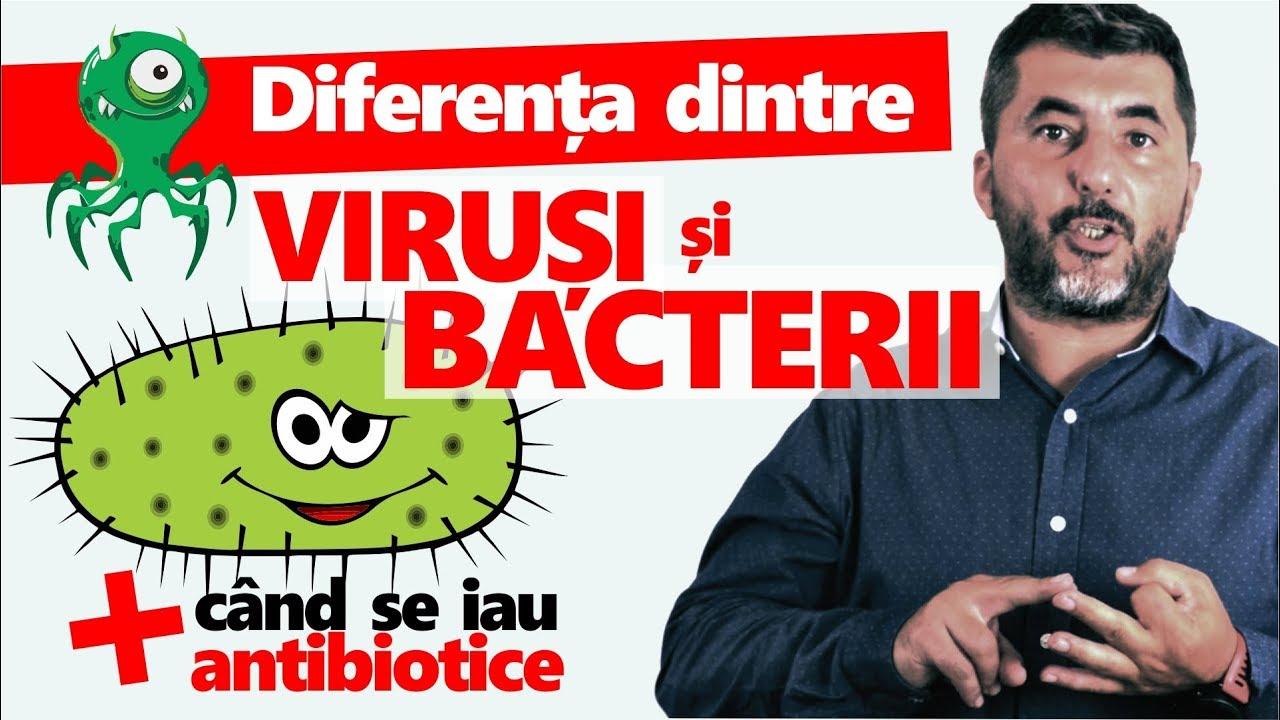 bacterii virusuri diferenta hpv virus to cervical cancer