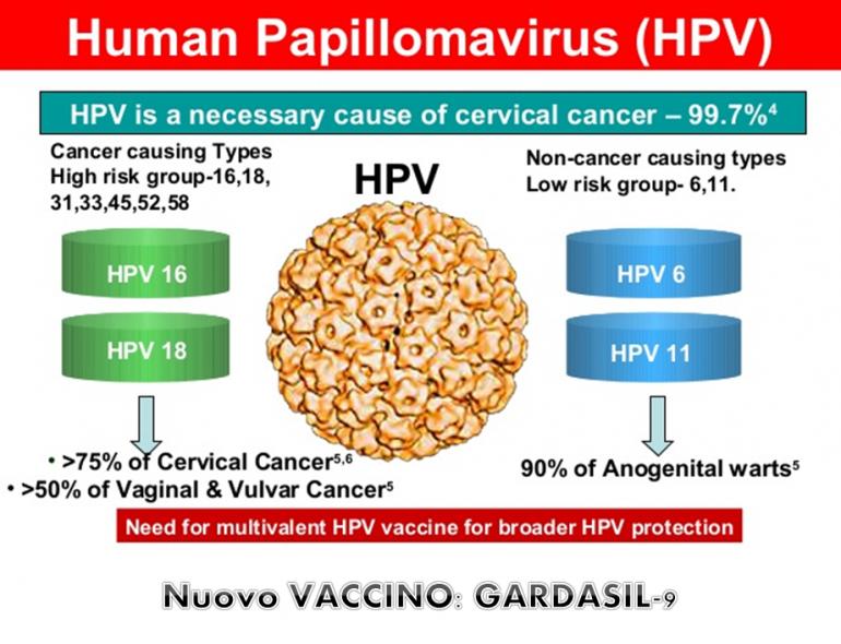 vaccinazione papilloma virus torino cancer de prostata agresivo