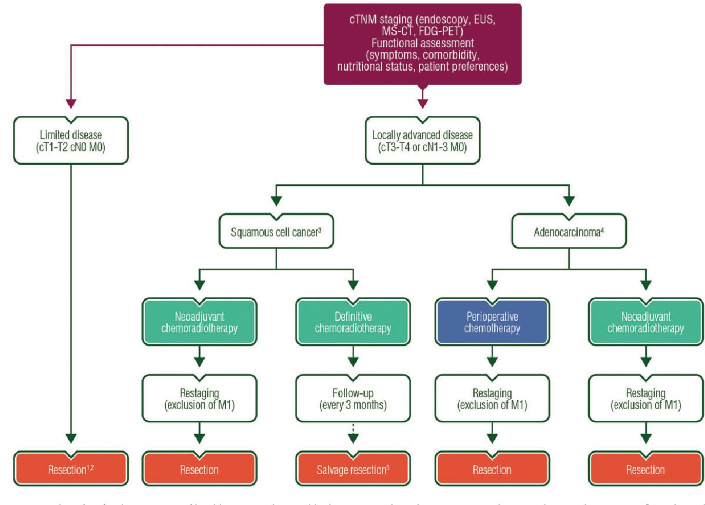 gastric cancer guideline esmo papillomavirus et urticaire