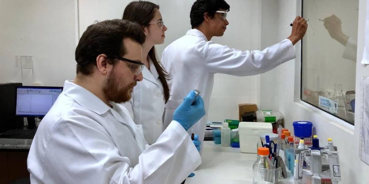 urine e papilloma virus papillomavirus en naturopathie