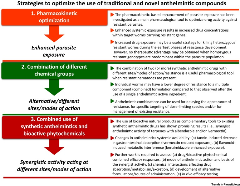 anthelmintic effect definition