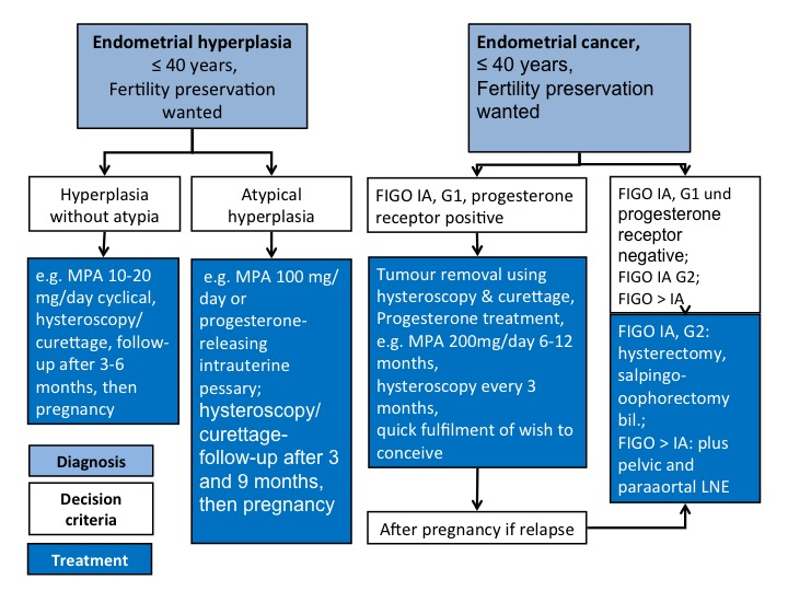 endometrial cancer histological types