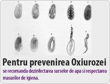 comment diagnostiquer le papillomavirus chez lhomme cancer carcinoma orofaringe