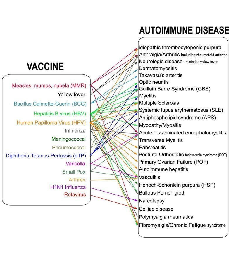 on the relationship between human papillomavirus vaccine and autoimmune diseases