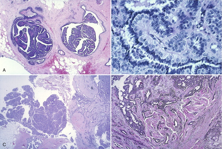 Diagnostic Pathology: Cytopathology - adventube.ro