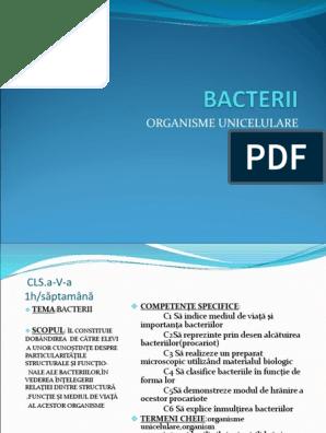 human papillomavirus infection virus structure cancer laringe tem cura