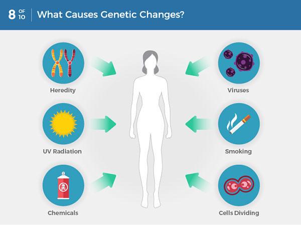 cancer genetic or environmental disease