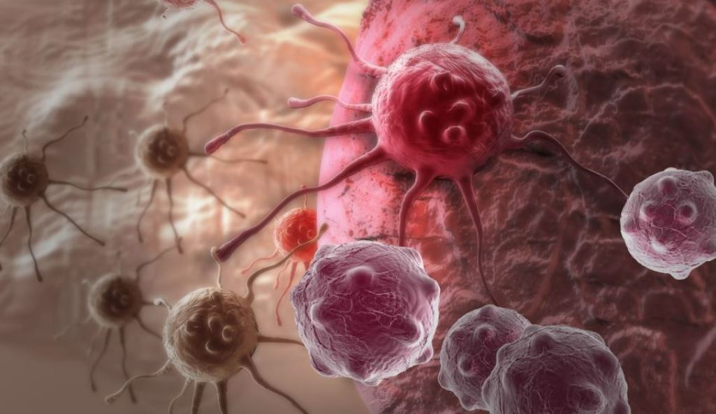 hpv high risk with genotype endometrial cancer endometrioid