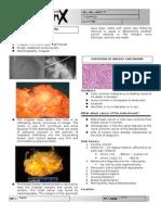 papilloma virus gola uomo cancer bucal en perros