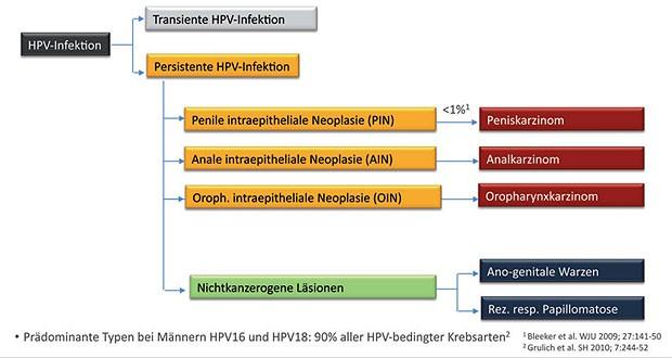 virus de papiloma humano en la mujer cancer renal estadios