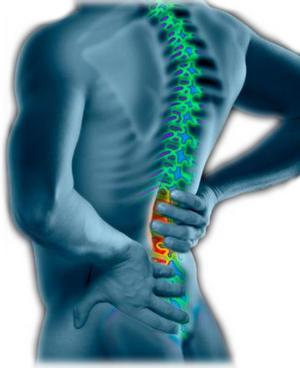 cancer testicular y dolor de espalda papilloma virus nei neonati