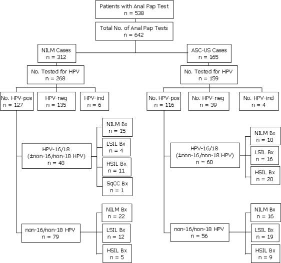 hpv high risk non-16/18 parazi?ii confort 3