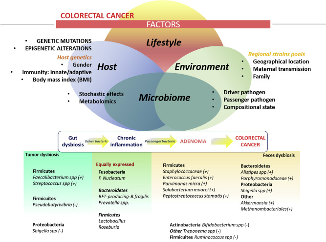 f colorectal cancer
