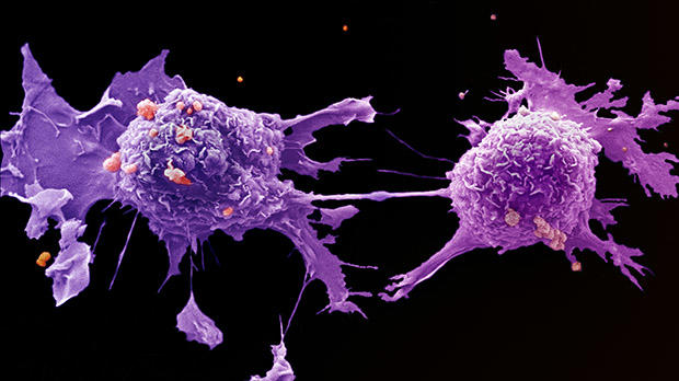 cancer more aggressive after chemo