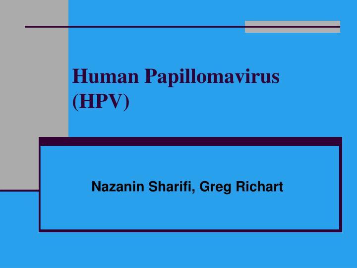 exophytic papillomas hpv high risk meaning