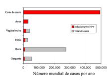 hpv en mujeres formas de contagio