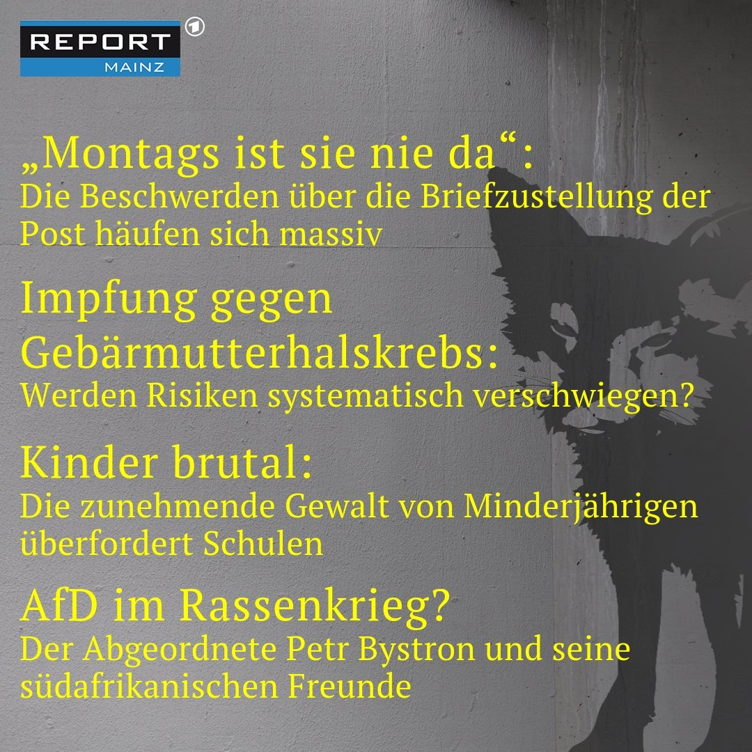 hpv impfung report mainz
