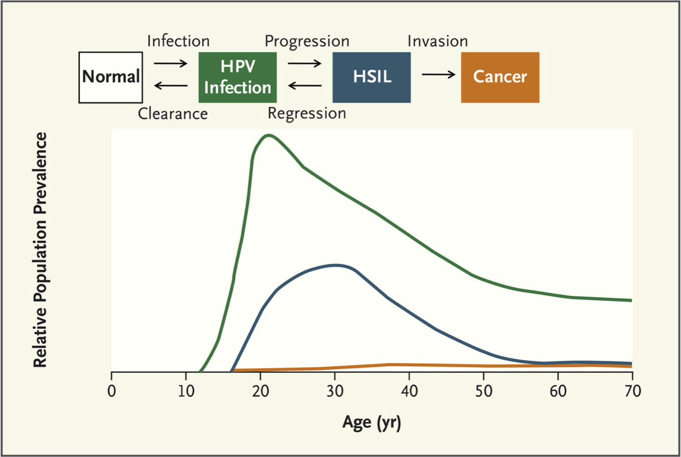 hpv infection treatment guidelines