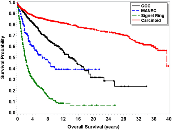 neuroendocrine cancer stage 4 survival rate