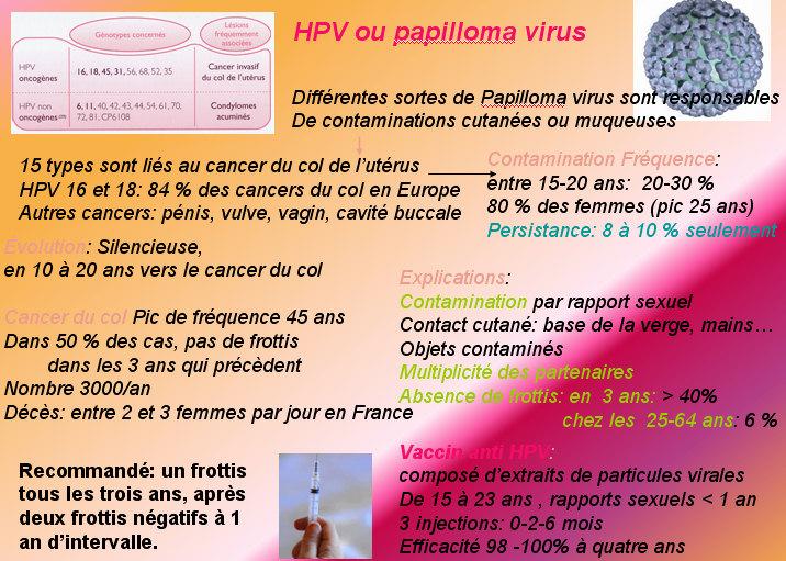 papillomavirus anglais cancer hormonal therapy